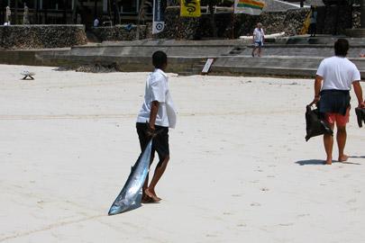 Fotoalbum von Malindi.info - Erste digitale Impressionen von Malindi 2003[ Foto 24 von 102 ]