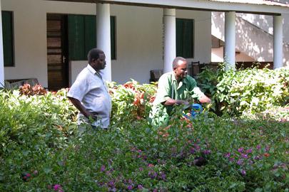 Fotoalbum von Malindi.info - Erste digitale Impressionen von Malindi 2003[ Foto 50 von 102 ]