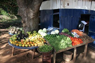 Fotoalbum von Malindi.info - Malindi-Impressionen 2005[ Foto 87 von 105 ]