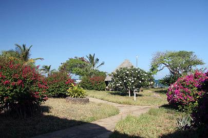 Fotoalbum von Malindi.info - Malindi-Impressionen 2005[ Foto 93 von 105 ]