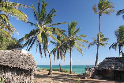 Fotoalbum von Malindi.info - Malindi-Impressionen 2005[ Foto 102 von 105 ]