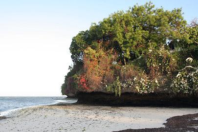 Fotoalbum von Malindi.info - Malindi-Impressionen 2005[ Foto 104 von 105 ]