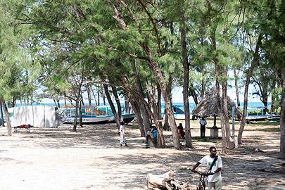 Fotoalbum von Malindi.info - Malindi-Impressionen von 2006[ Foto 6 von 83 ]