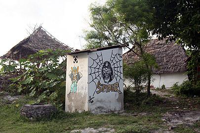Fotoalbum von Malindi.info - Flora und Fauna Kenia 2006[ Foto 42 von 43 ]