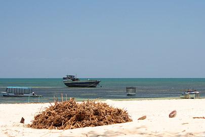 Fotoalbum von Malindi.info - Fotos von Malindi und Umgebung 2007[ Foto 1 von 90 ]