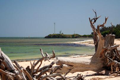 Fotoalbum von Malindi.info - Fotos von Malindi und Umgebung 2007[ Foto 18 von 90 ]