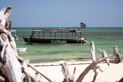 Fotoalbum von Malindi.info - Fotos von Malindi und Umgebung 2007[ Foto 19 von 90 ]