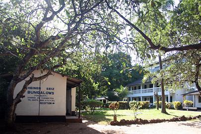 Fotoalbum von Malindi.info - Fotos von Malindi und Umgebung 2007[ Foto 40 von 90 ]