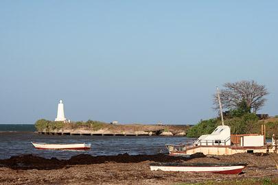 Fotoalbum von Malindi.info - Fotos von Malindi und Umgebung 2007[ Foto 79 von 90 ]