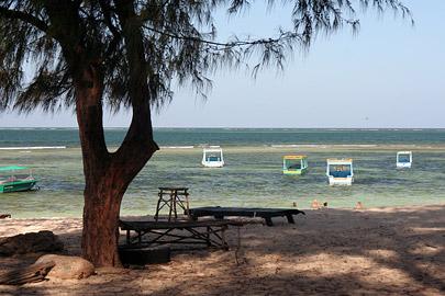 Fotoalbum von Malindi.info - Malindi Marine Park 2008[ Foto 1 von 63 ]