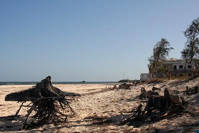 Fotoalbum von Malindi.info - Malindi Marine Park 2008[ Foto 5 von 63 ]