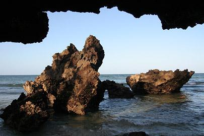 Fotoalbum von Malindi.info - Malindi Marine Park 2008[ Foto 18 von 63 ]