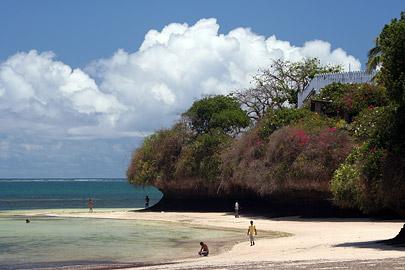 Fotoalbum von Malindi.info - Malindi Marine Park 2008[ Foto 24 von 63 ]