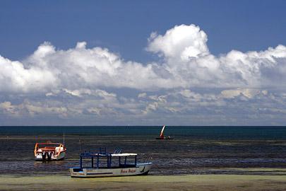 Fotoalbum von Malindi.info - Malindi Marine Park 2008[ Foto 25 von 63 ]