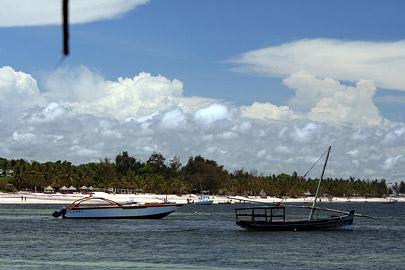 Fotoalbum von Malindi.info - Malindi Marine Park 2008[ Foto 27 von 63 ]