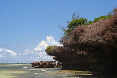 Fotoalbum von Malindi.info - Malindi Marine Park 2008[ Foto 29 von 63 ]