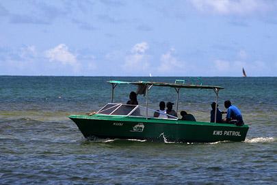 Fotoalbum von Malindi.info - Malindi Marine Park 2008[ Foto 39 von 63 ]