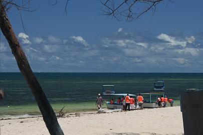 Fotoalbum von Malindi.info - Malindi Marine Park 2008[ Foto 40 von 63 ]