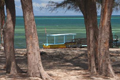 Fotoalbum von Malindi.info - Malindi Marine Park 2008[ Foto 43 von 63 ]