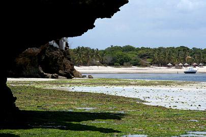 Fotoalbum von Malindi.info - Malindi Marine Park 2008[ Foto 55 von 63 ]