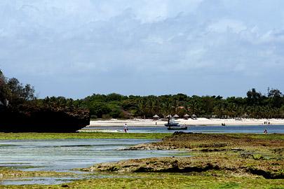 Fotoalbum von Malindi.info - Malindi Marine Park 2008[ Foto 59 von 63 ]