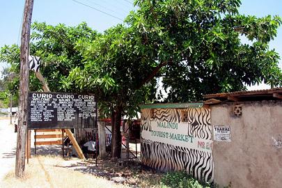 Fotoalbum von Malindi.info - Malindi Impressionen 2008[ Foto 14 von 99 ]