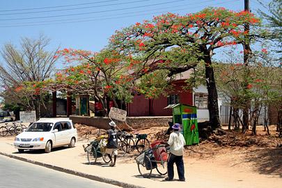 Fotoalbum von Malindi.info - Malindi Impressionen 2008[ Foto 28 von 99 ]
