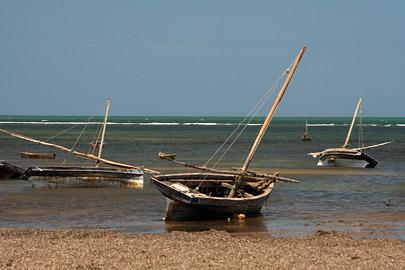 Fotoalbum von Malindi.info - Malindi Impressionen 2008[ Foto 44 von 99 ]