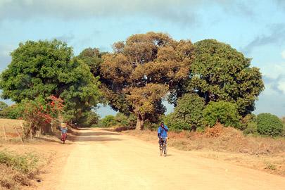Fotoalbum von Malindi.info - Malindi Impressionen 2008[ Foto 72 von 99 ]