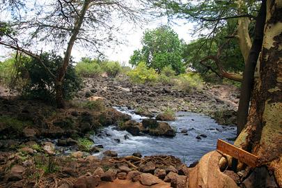 Fotoalbum von Malindi.info - Tsavo West/East Safari im März 2009[ Foto 14 von 140 ]