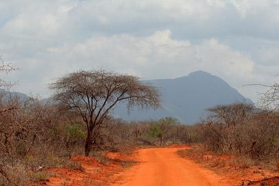 Fotoalbum von Malindi.info - Tsavo West/East Safari im März 2009[ Foto 24 von 140 ]