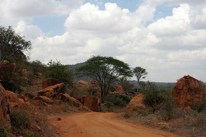 Fotoalbum von Malindi.info - Tsavo West/East Safari im März 2009[ Foto 26 von 140 ]