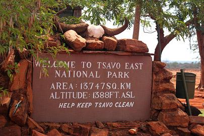 Fotoalbum von Malindi.info - Tsavo West/East Safari im März 2009[ Foto 67 von 140 ]