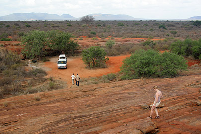 Fotoalbum von Malindi.info - Tsavo West/East Safari im März 2009[ Foto 72 von 140 ]