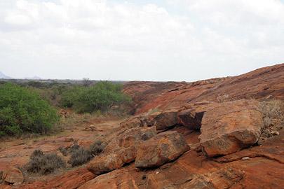 Fotoalbum von Malindi.info - Tsavo West/East Safari im März 2009[ Foto 73 von 140 ]