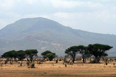 Fotoalbum von Malindi.info - Tsavo West/East Safari im März 2009[ Foto 84 von 140 ]