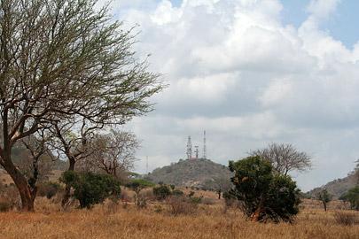Fotoalbum von Malindi.info - Tsavo West/East Safari im März 2009[ Foto 86 von 140 ]
