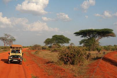 Fotoalbum von Malindi.info - Tsavo West/East Safari im März 2009[ Foto 104 von 140 ]