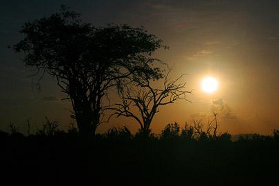 Fotoalbum von Malindi.info - Tsavo West/East Safari im März 2009[ Foto 106 von 140 ]