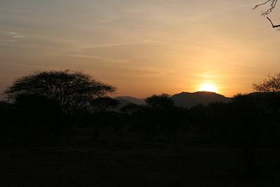 Fotoalbum von Malindi.info - Tsavo West/East Safari im März 2009[ Foto 110 von 140 ]
