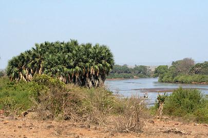 Fotoalbum von Malindi.info - Tsavo West/East Safari im März 2009[ Foto 124 von 140 ]