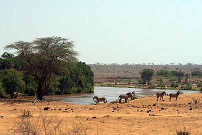 Fotoalbum von Malindi.info - Tsavo West/East Safari im März 2009[ Foto 130 von 140 ]