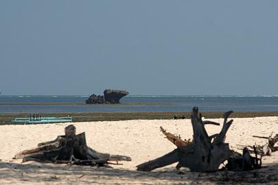 Fotoalbum von Malindi.info - Malindi Marine Park 2009[ Foto 8 von 59 ]