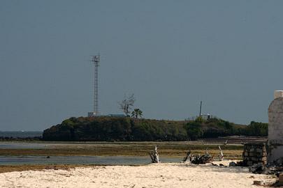 Fotoalbum von Malindi.info - Malindi Marine Park 2009[ Foto 12 von 59 ]