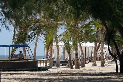 Fotoalbum von Malindi.info - Malindi Marine Park 2009[ Foto 26 von 59 ]