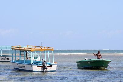 Fotoalbum von Malindi.info - Malindi Marine Park 2009[ Foto 36 von 59 ]