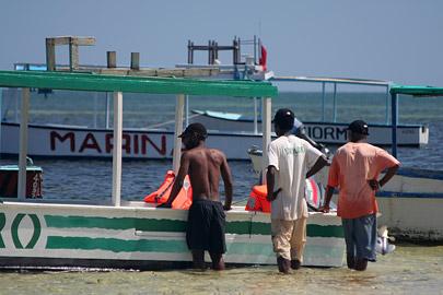 Fotoalbum von Malindi.info - Malindi Marine Park 2009[ Foto 42 von 59 ]