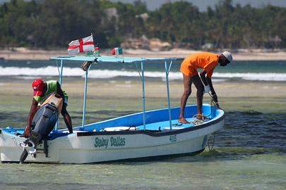 Fotoalbum von Malindi.info - Malindi Marine Park 2009[ Foto 45 von 59 ]