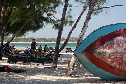 Fotoalbum von Malindi.info - Malindi Marine Park 2009[ Foto 46 von 59 ]