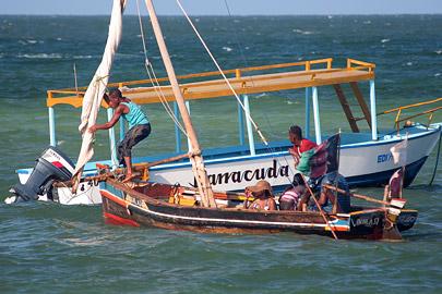 Fotoalbum von Malindi.info - Malindi Marine Park 2009[ Foto 58 von 59 ]